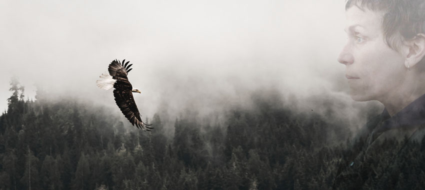 l'acquila vola sola nel cielo come la psiche nomade